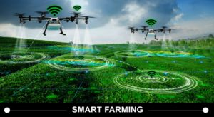 IoT in agriculture: Is Smart Farming the future?
